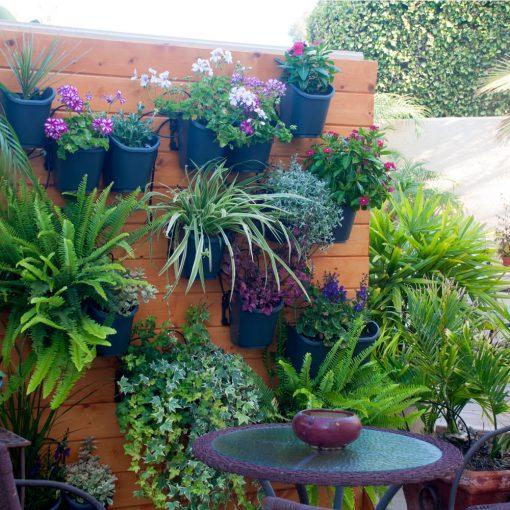 Vườn tường DIG living wall 09